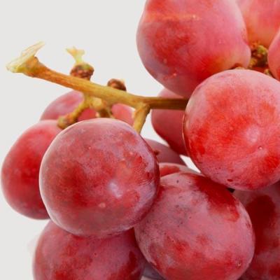 Масаж на тяло с червено грозде